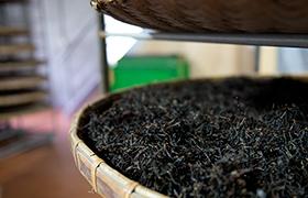 発酵が終わった紅茶